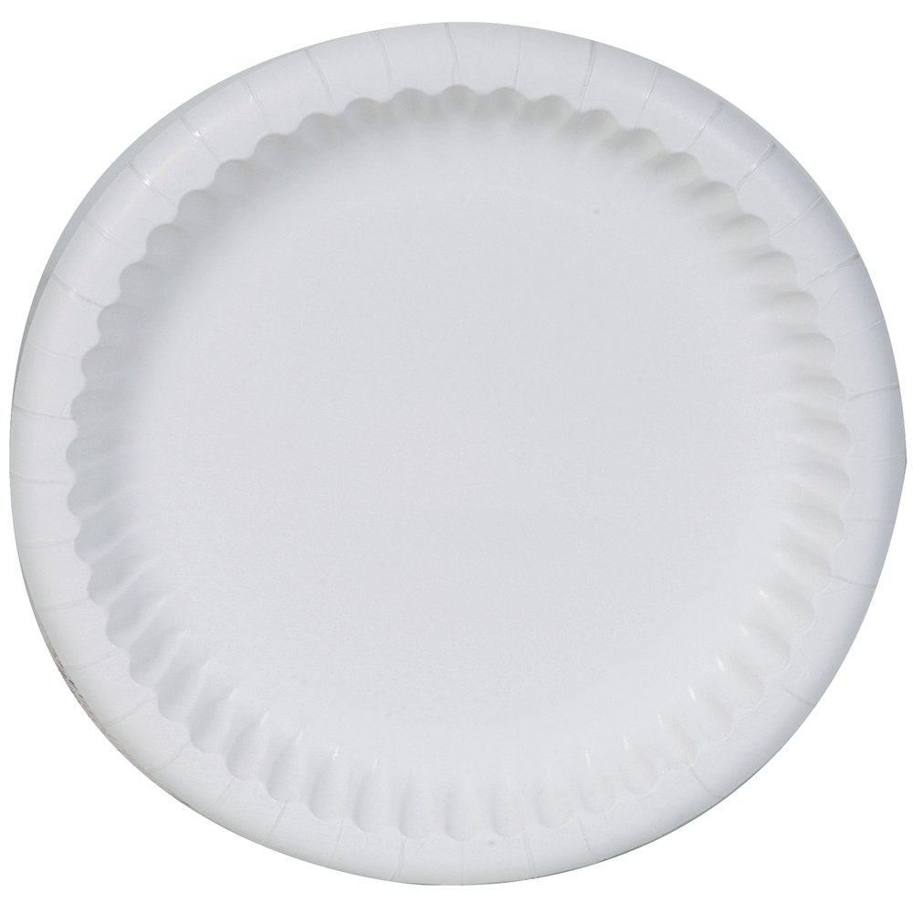 10078731938173 Food Service Paper Plates, White, 8 5/8 inch diameter